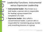 leadership functions instrumental versus expressive leadership