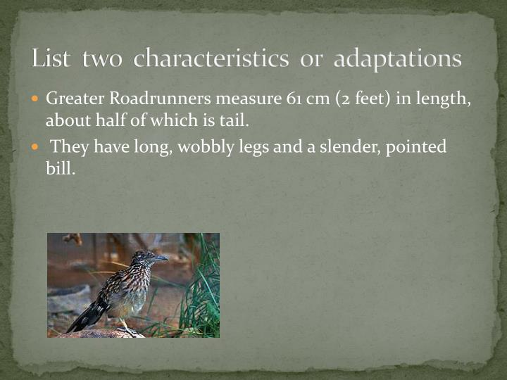 List  two  characteristics  or  adaptations