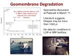 geomembrane degradation