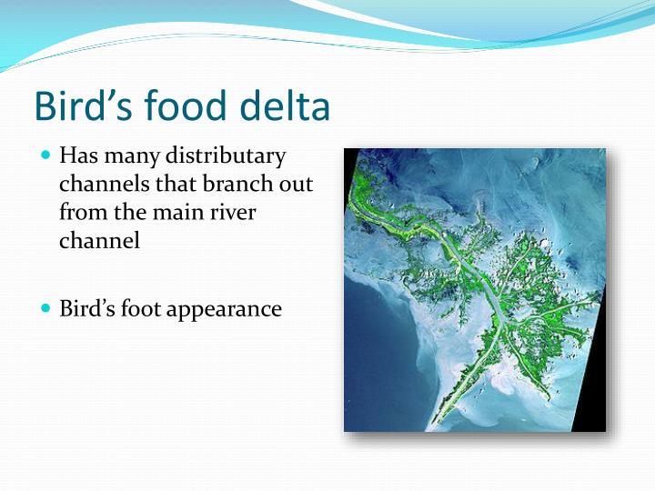 Bird's food delta