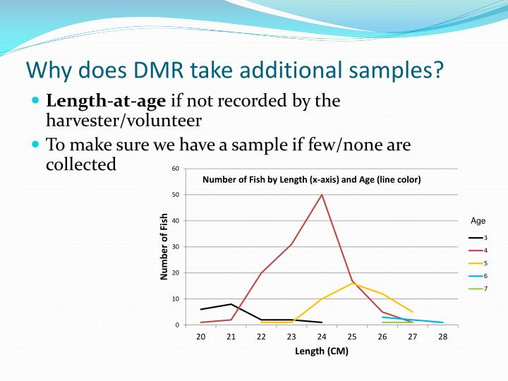 Why does DMR take additional samples?