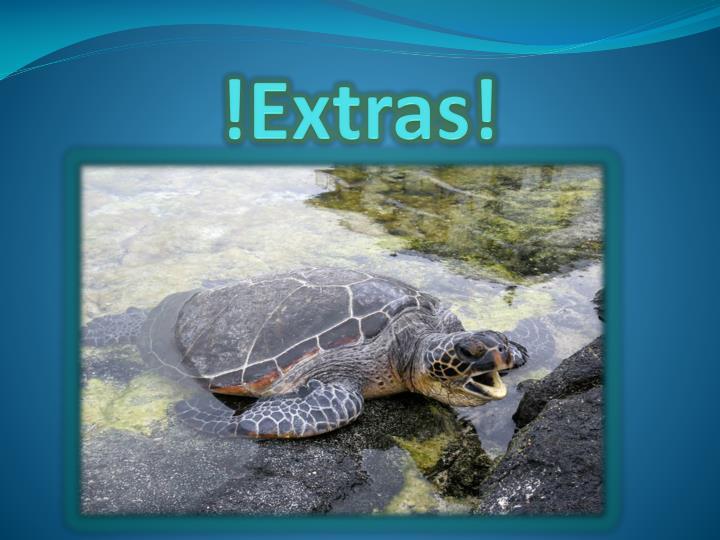 !Extras!