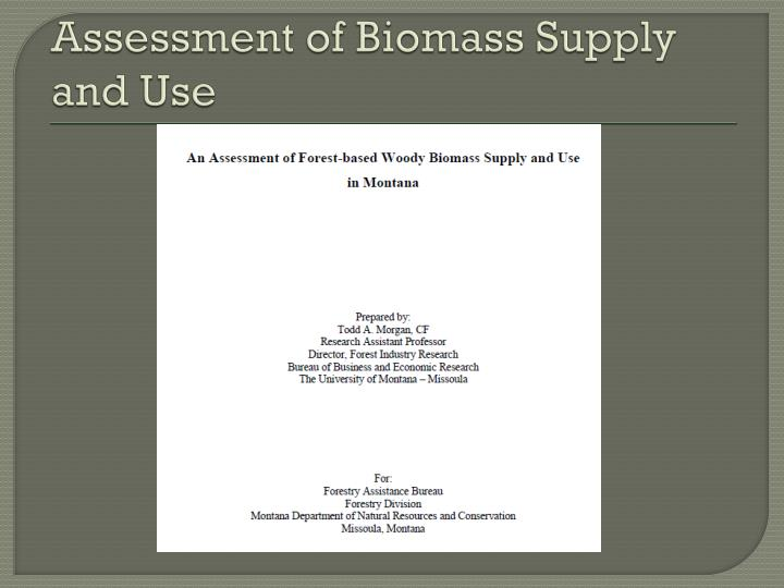 Assessment of biomass supply and use