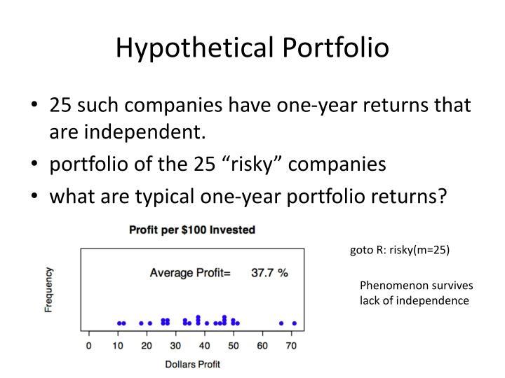 Hypothetical Portfolio
