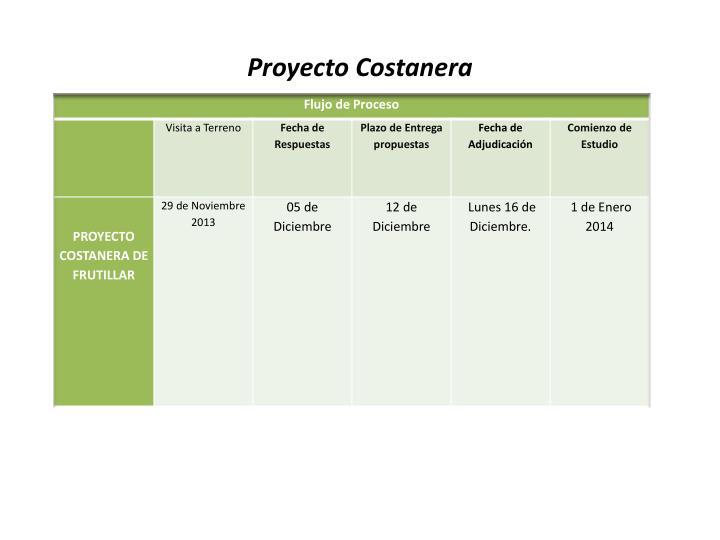 Proyecto Costanera
