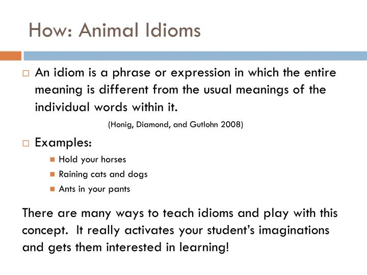 How: Animal Idioms