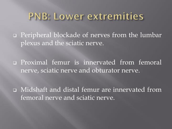 PNB: Lower extremities
