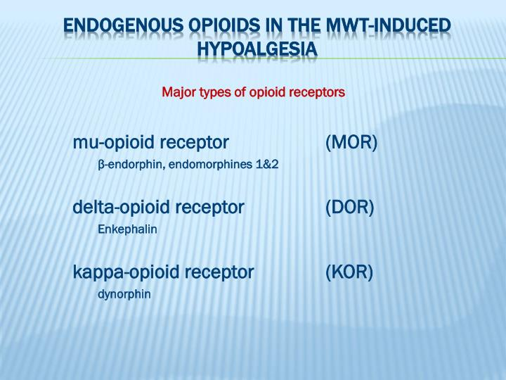 Endogenous opioids in the MWT-induced hypoalgesia