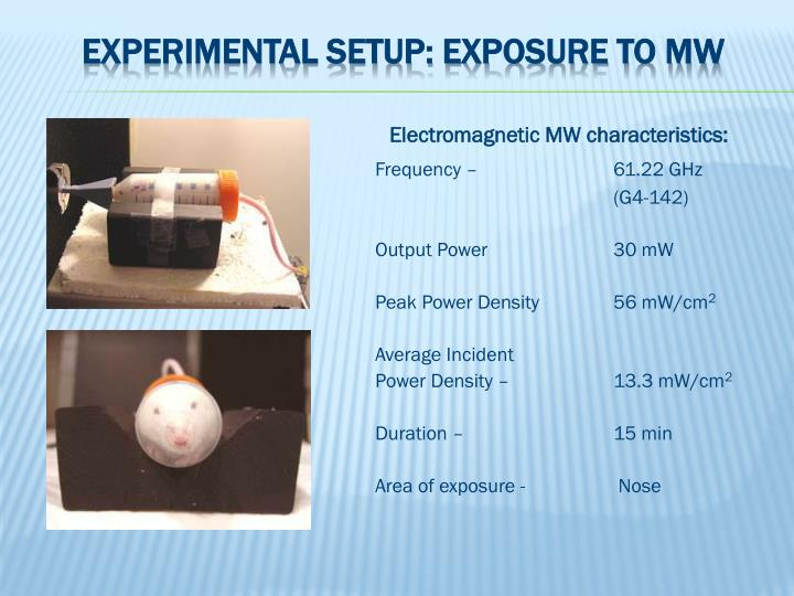 Experimental setup: exposure to MW