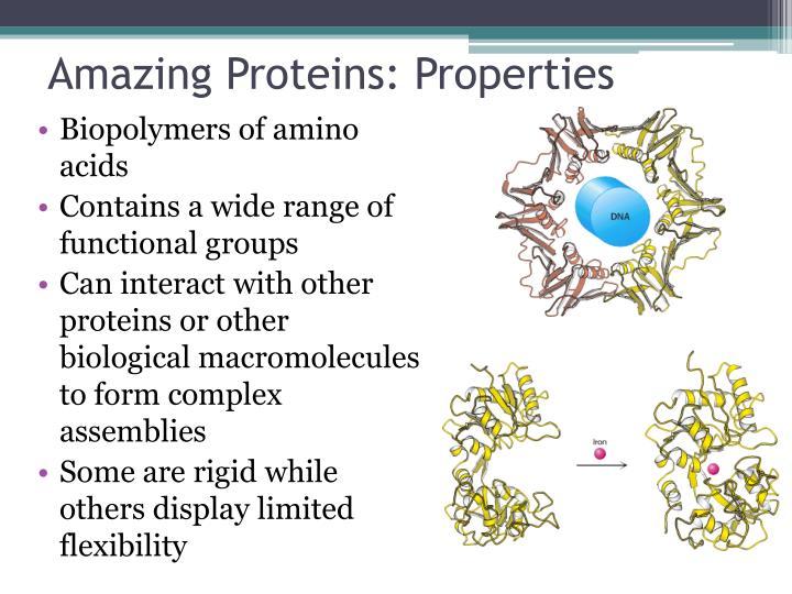 Amazing Proteins: Properties