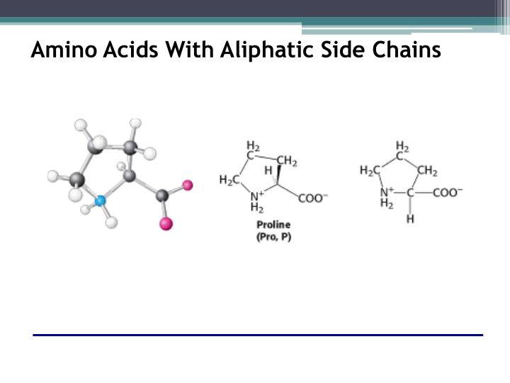 Amino Acids With Aliphatic Side Chains