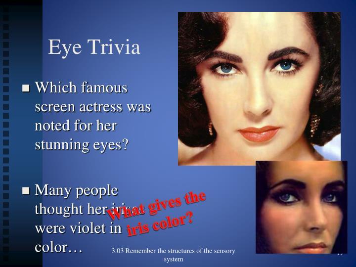Eye Trivia