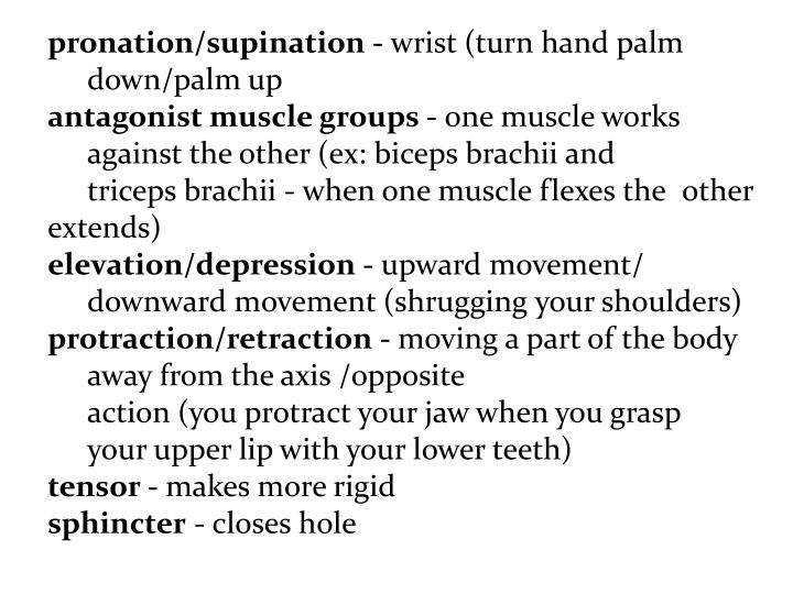 pronation/supination