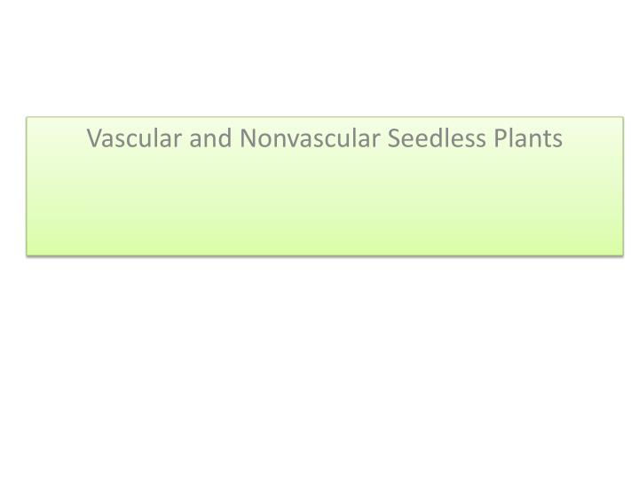 Vascular and nonvascular seedless plants
