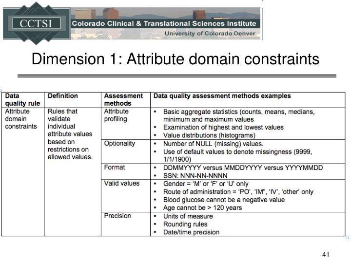 Dimension 1: Attribute domain constraints