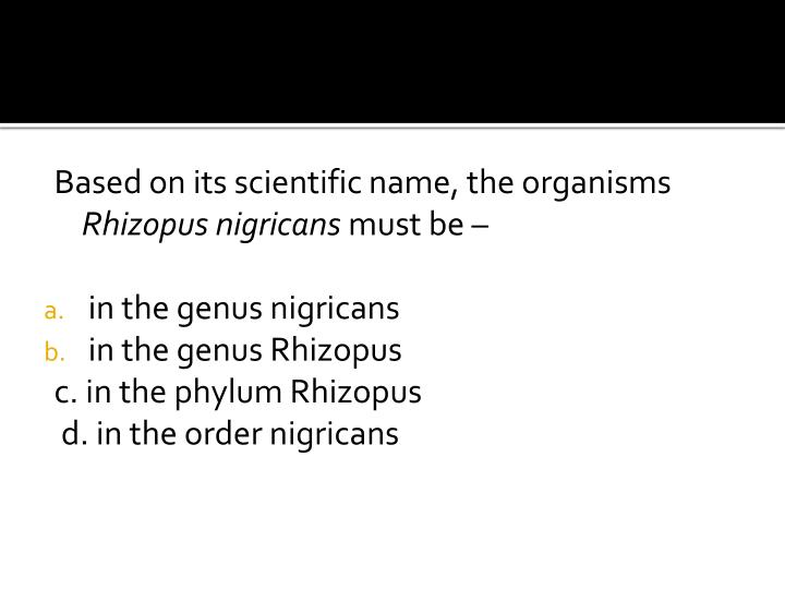 Based on its scientific name, the organisms