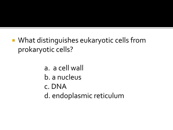 What distinguishes eukaryotic cells from prokaryotic cells