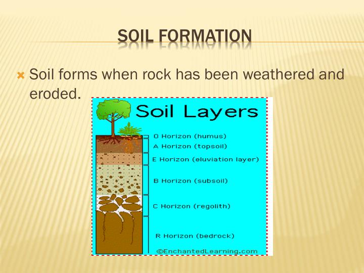Soil formation ppt driverlayer search engine for Soil formation