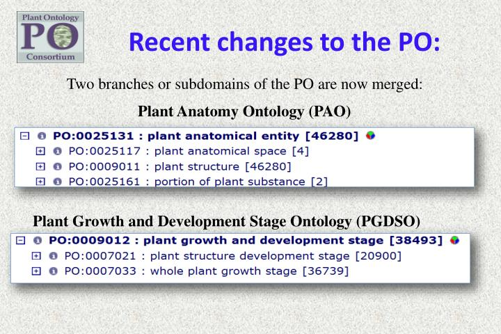 Recent changes to the PO: