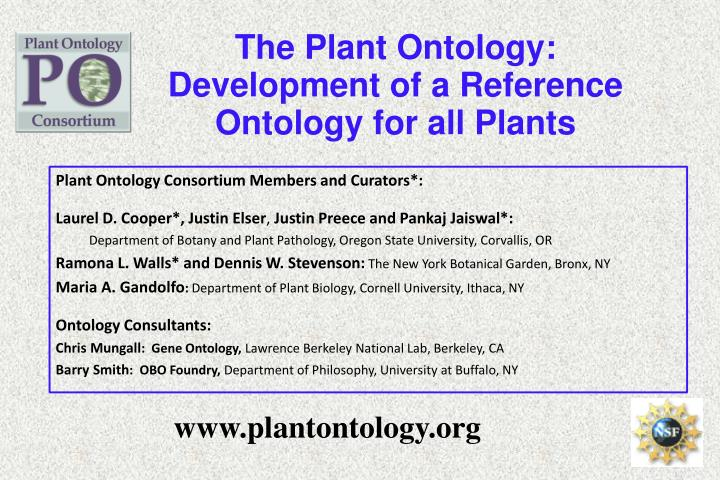 The Plant Ontology: Development of a