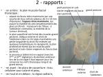 2 rapports