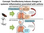 concept tonsillectomy induces changes in systemic inflammation associated with asthma
