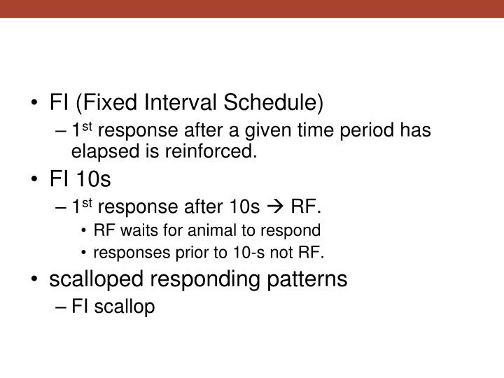 FI (Fixed Interval Schedule)