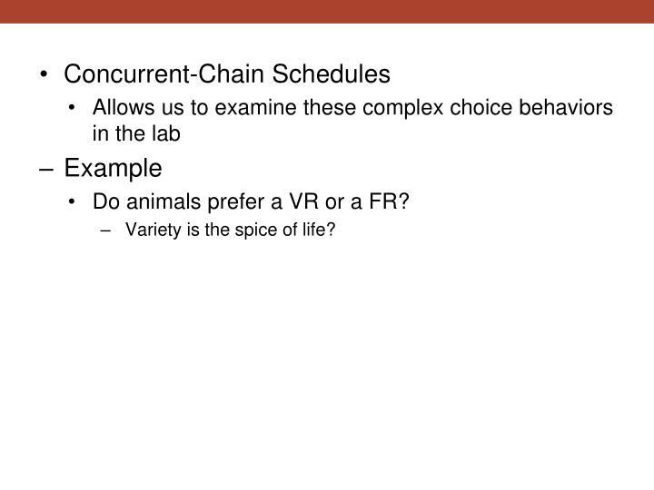 Concurrent-Chain Schedules