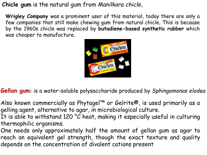Chicle gum