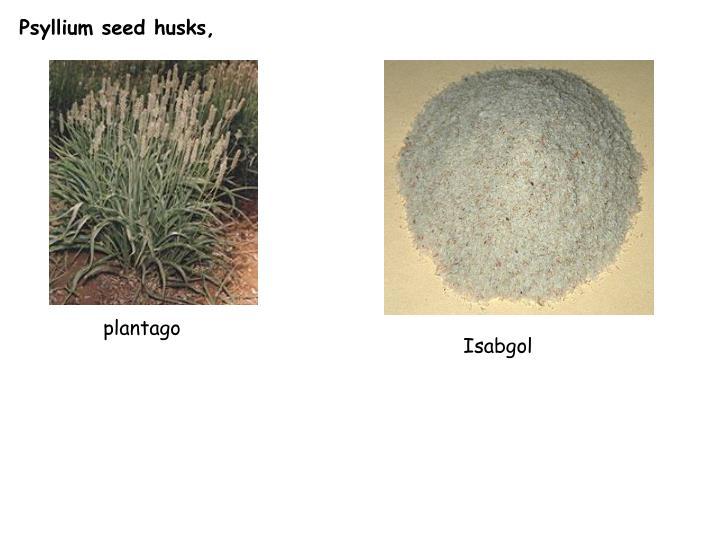 Psyllium seed husks,