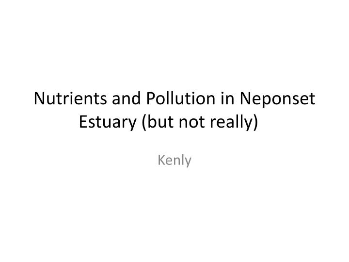 nutrients and pollution in neponset estuary but not really