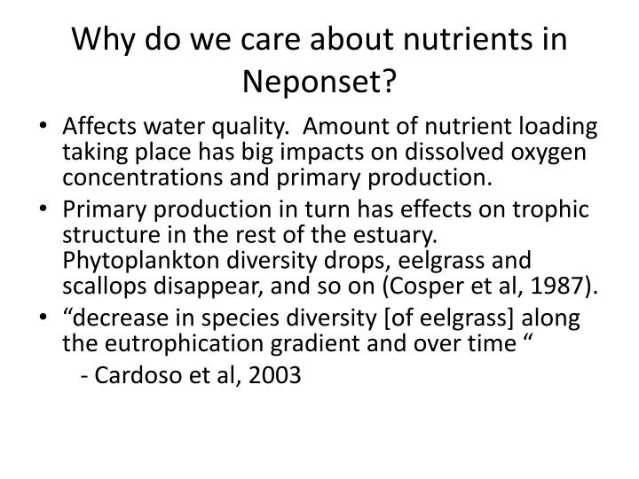 Why do we care about nutrients in Neponset?