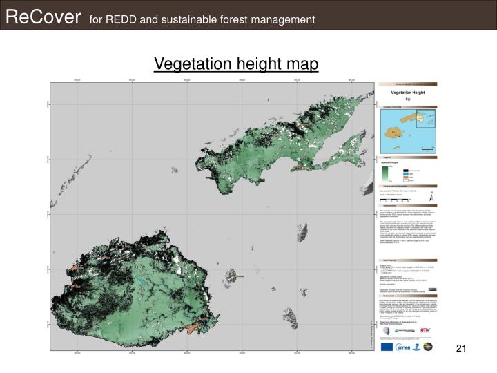 Vegetation height map