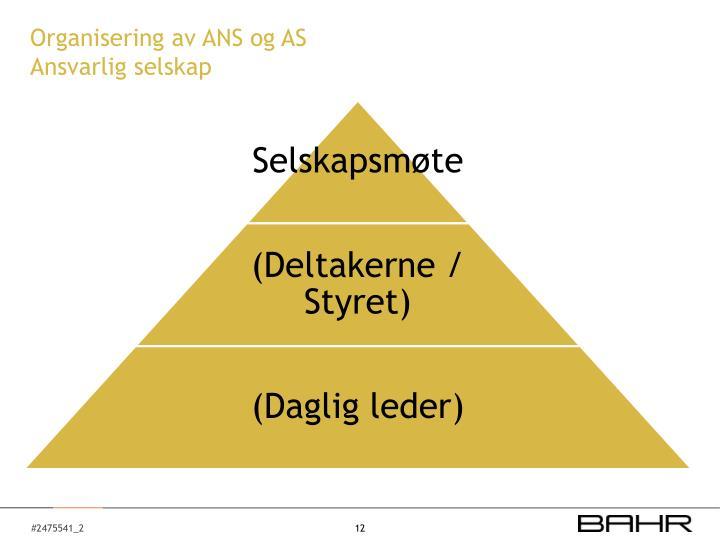 Organisering av ANS og AS