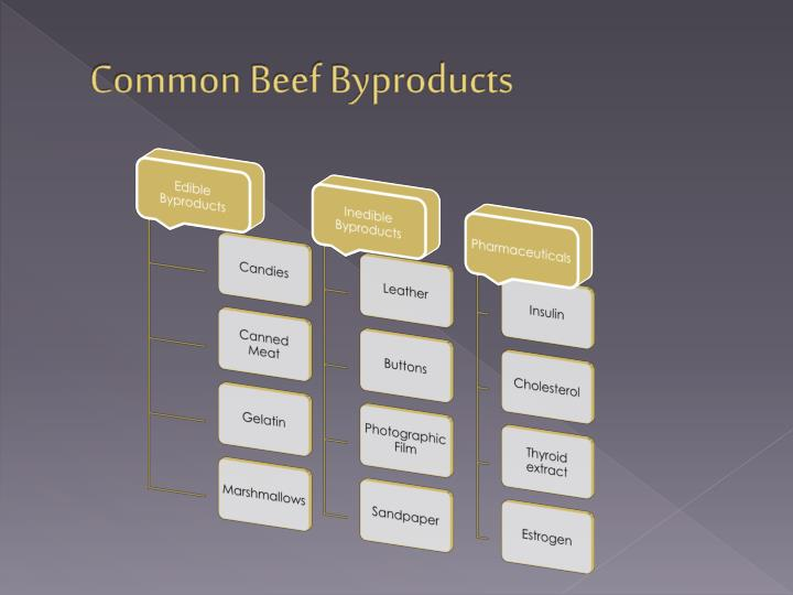 Common Beef Byproducts