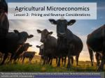 agricultural microeconomics lesson 2 pricing and revenue considerations