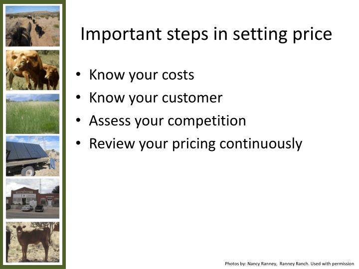 Important steps in setting price