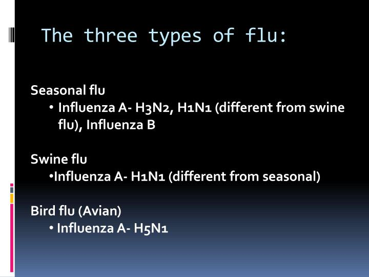 The three types of flu:
