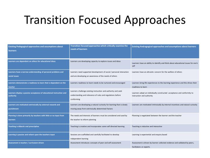 Transition Focused Approaches