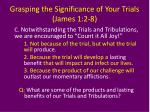 grasping the significance of your trials james 1 2 83