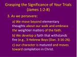 grasping the significance of your trials james 1 2 87