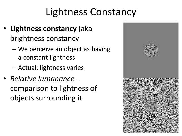 Lightness Constancy