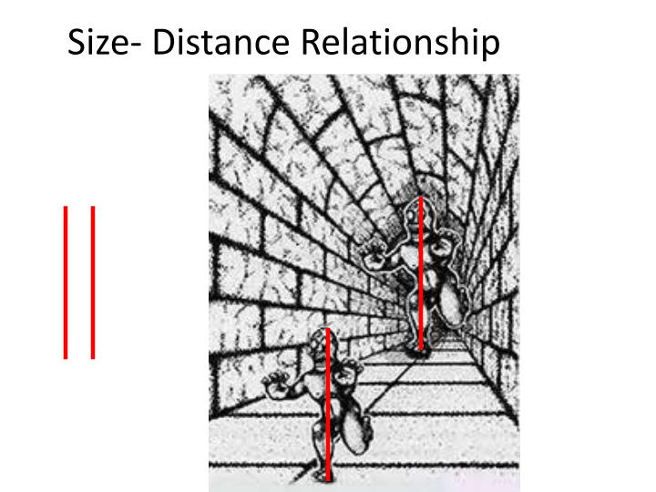Size- Distance Relationship
