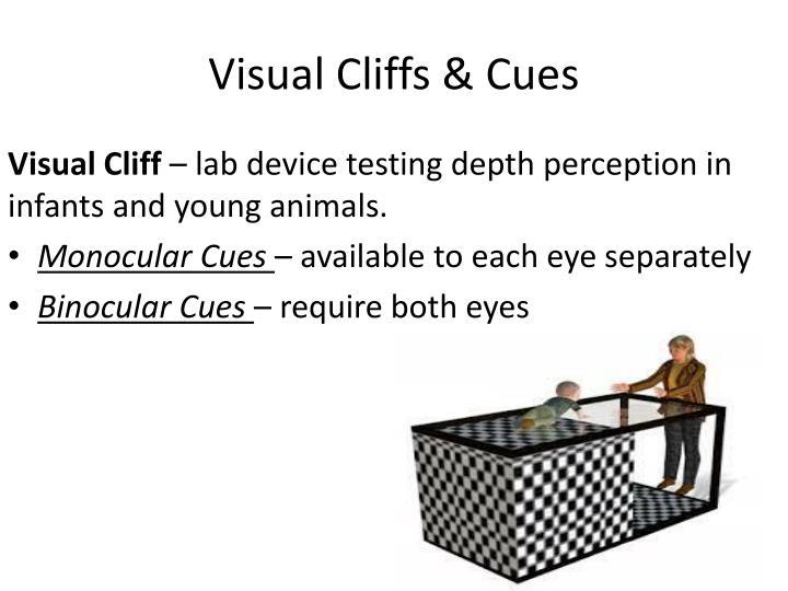 Visual Cliffs & Cues