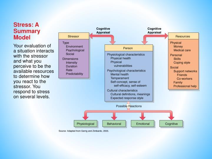 Stress: A Summary Model