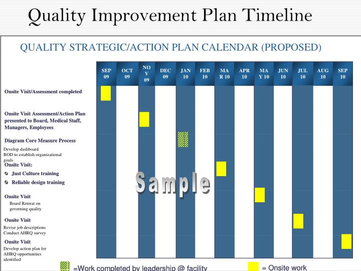 Quality Improvement Plan Timeline