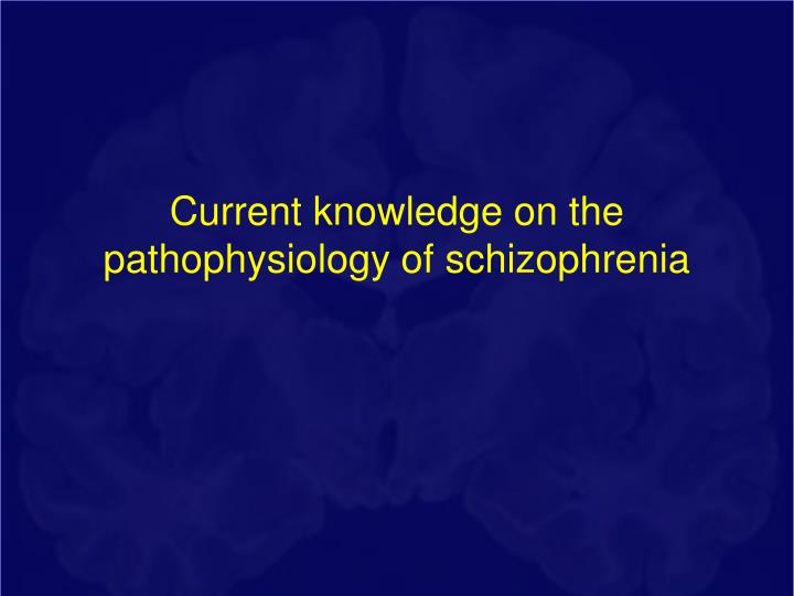 Current knowledge on the pathophysiology of schizophrenia