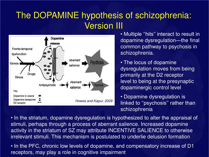 The DOPAMINE hypothesis of schizophrenia:
