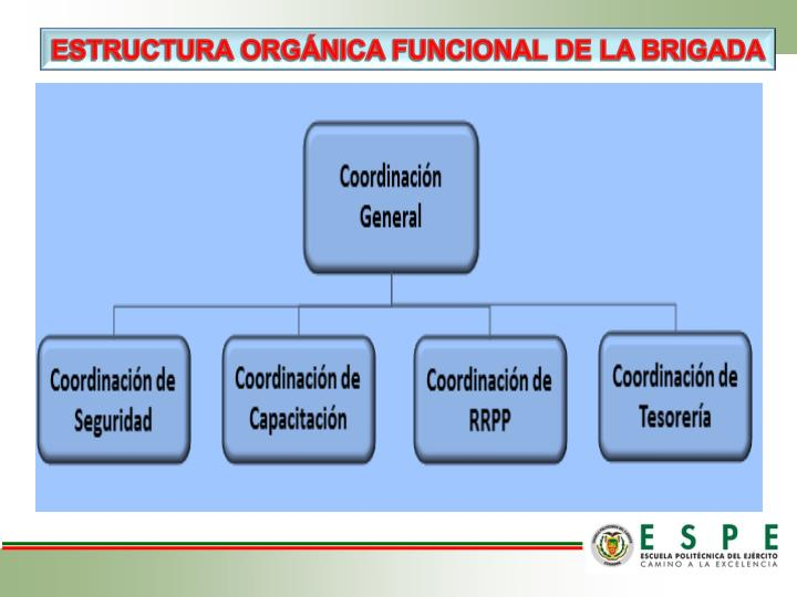 ESTRUCTURA ORGÁNICA FUNCIONAL DE LA BRIGADA