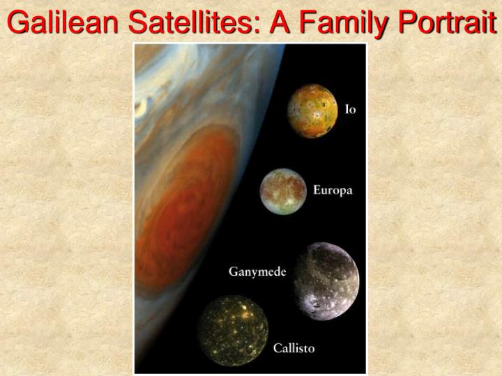 Galilean Satellites: A Family Portrait